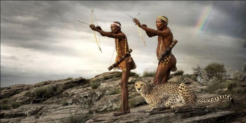 Selon une légende du peuple San (ensemble de peuples autochtones d'Afrique australe) à qui le créateur opposa le guépard pour déterminer quel était l'animal le plus rapide sur Terre ?