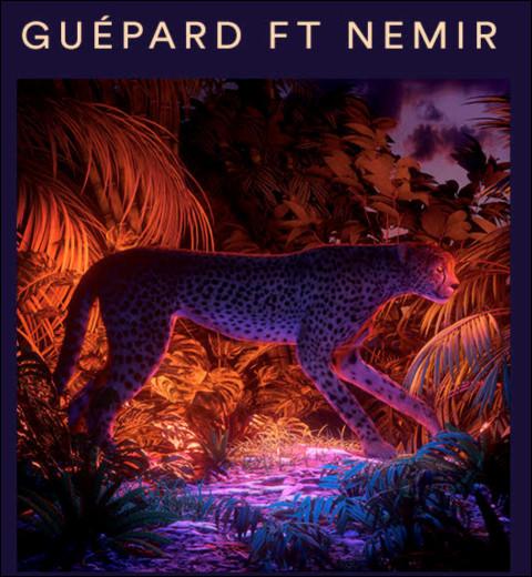 """Quel célèbre Youtubeur français a sorti en 2020 une chanson intitulée """"Guépard"""", en featuring avec le chanteur Nemir ?"""