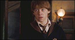 TOP 7 : Ron Weasley (270 pts) : que reproche-t-il à Pattenrond lors de sa 3e année à Poudlard ?