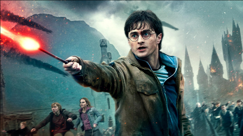 TOP 4 : Harry Potter (312 pts) : lors de la bataille des 7 Potter, avec qui Harry est-il monté ?