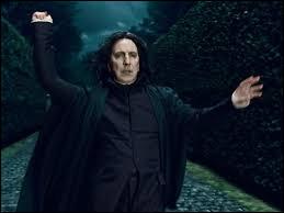 TOP 3 : Severus Rogue (329 pts) : quel sortilège Rogue n'a-t-il pas inventé ?