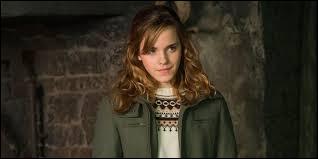 TOP 1 : Hermione Granger ( 482 pts ) : quel est le métier de ses parents moldus ?