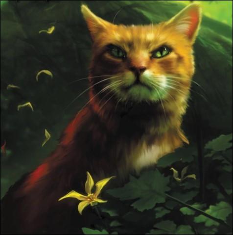 Le clan des Étoiles annonce aux chats présents aux Quatre Chênes qu'il faut trouver...(1 réponse)