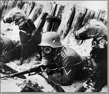Lorsque l'utilisation du gaz est devenue très récurrente, quels animaux ont eu droit à des masques à gaz durant la guerre de 14-18 ?