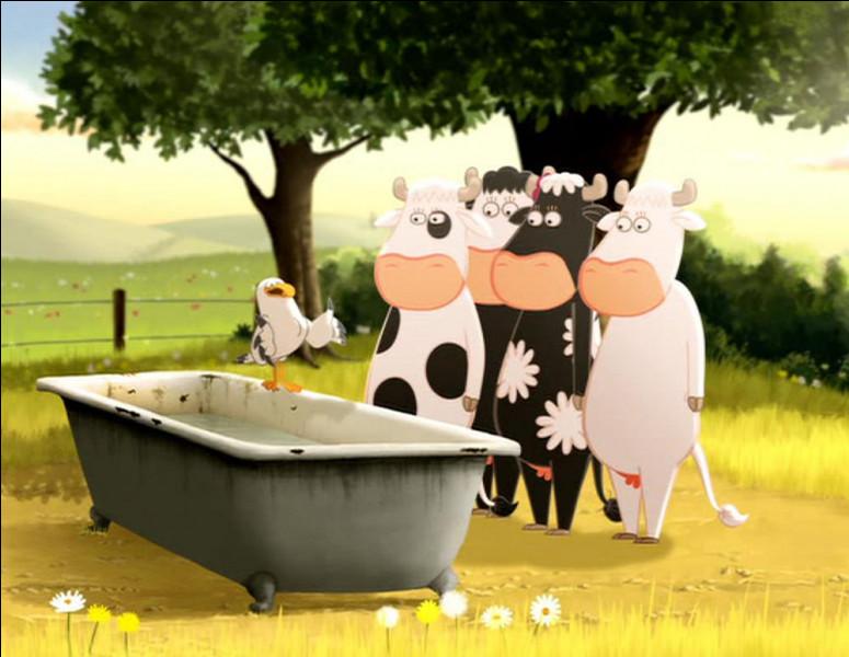 Identifiez la montbéliarde, première laitière dans les appellations d'origine contrôlées françaises !