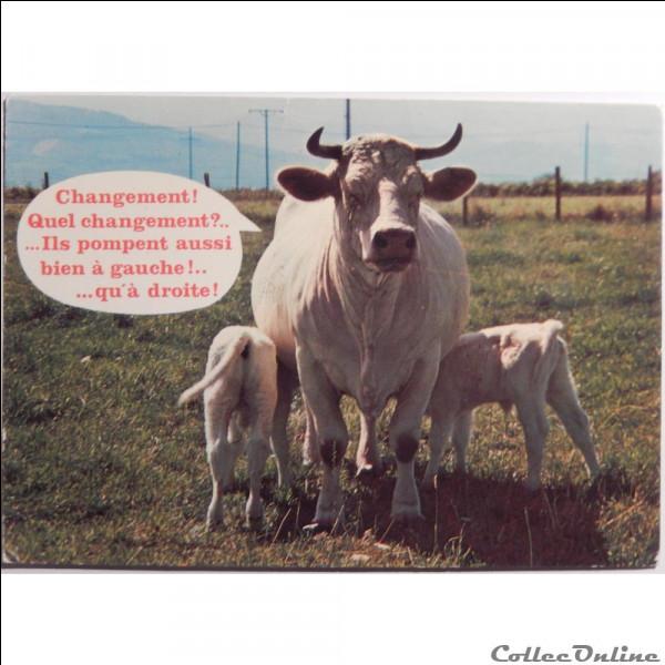 Non ce n'est pas une valse, c'est une vache, la tarentaise !