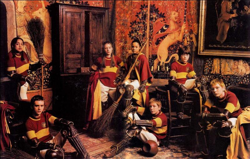 Quel était son rôle dans l'équipe de quidditch à Poudlard ?