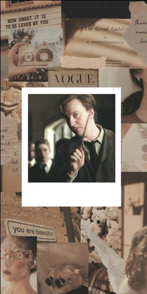 Quel acteur joue Remus Lupin ?