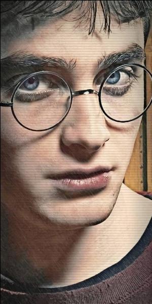 Qui joue Harry Potter ?