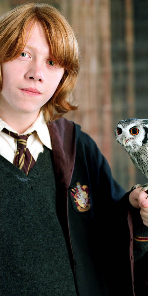 Qui joue Ron Weasley ?
