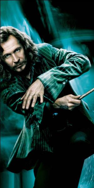 Qui joue Sirius Black ?