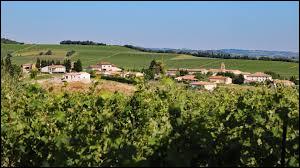 Village viticole occitan, dans l'aire urbaine de Limoux, Gaja-et-Villedieu se situe dans le département ...