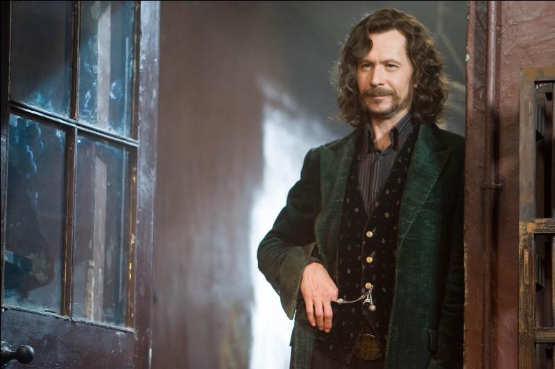 Dans Harry Potter 5, Sirius montre l'arbre généalogique de sa famille à Harry et explique que deux membres de la famille Black ont été supprimés. Quels sont ces deux personnages ?