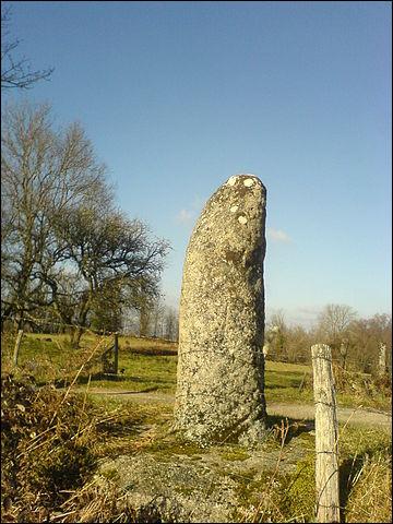 Billom est situé sur l'ancienne voie romaine appelée [...] qui reliait Lyon à Saintes.