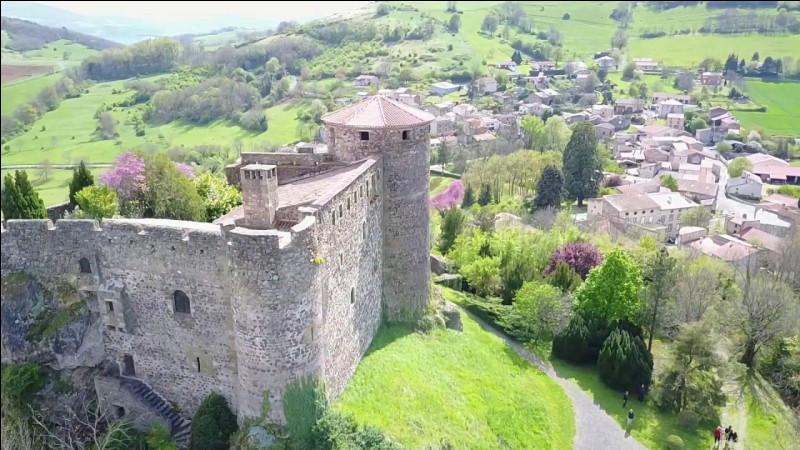 Mais n'allez pas croire que le château n'est là que pour satisfaire vos beaux yeux de touristes blasés : à quoi sert-il actuellement ?