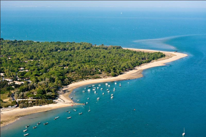 Nous allons maintenant tout près pour nous arrêter à l'île de Ré ! Située en Charente-Maritime, elle ravira les amoureux de la bicyclette du fait de son relief plat ! En plus de ses forêts, plages, marais salants, c'est l'endroit idéal pour se reposer. L'île de Ré est la _________ plus grande île de France par superficie.Indice : au même titre que Bornéo est la ________ plus grande île du monde.
