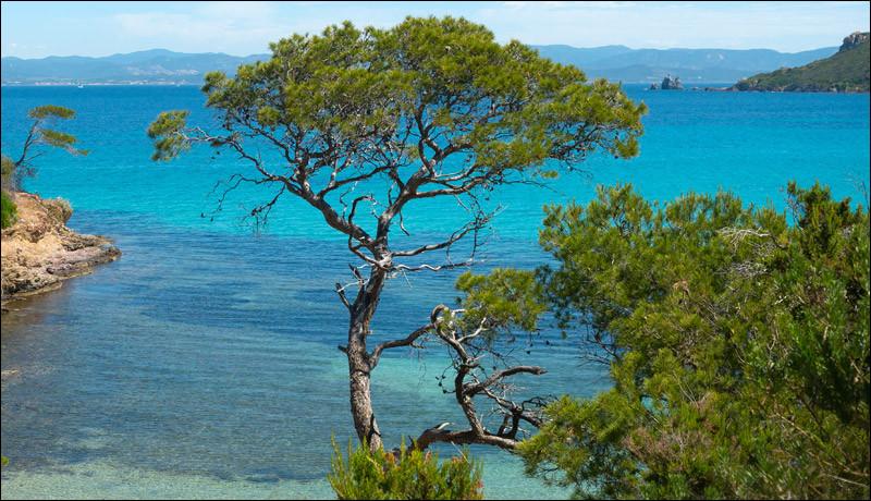 Direction maintenant la magnifique île de Porquerolles ! Perle de la côte méditerranéenne française, nous faisons escale dans un endroit paradisiaque au sud-est de Toulon. C'est dans le golf d'Hyères que nous la trouverons. Mais au fait, combien de jours par an bénéficie-t-elle d'un ensoleillement enthousiasmant à la baignade ?Indice : c'est le nom d'un film de guerre en Antiquité sorti en 2006.