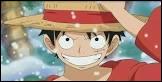 Quel âge a Luffy après la pause des 2 ans ?