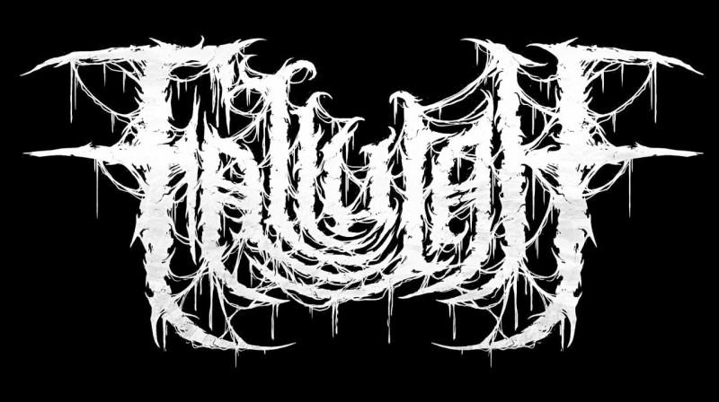 Quel est le style du groupe Fallujah ?