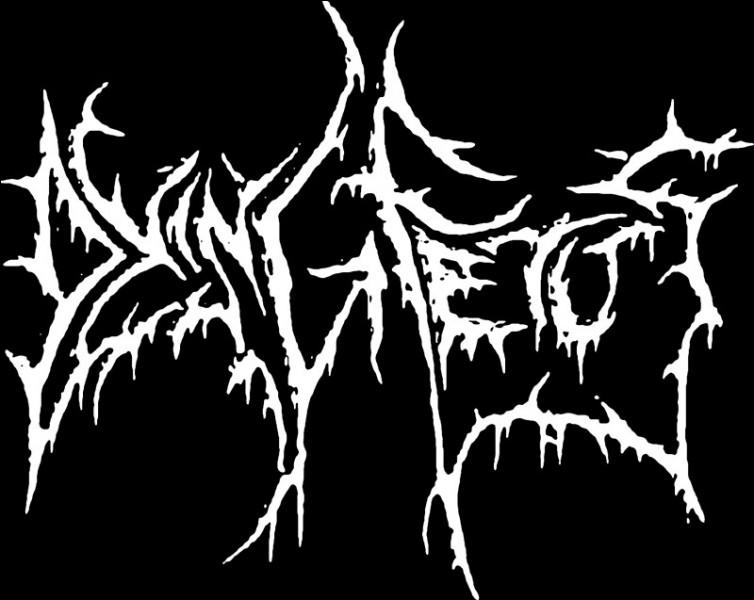 Dans quelle branche du death metal se situe Dying Fetus ?