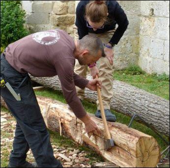 Ici, nous assistons à l'équarissage d'un tronc de chêne brut pour...