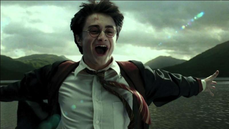 Quel est son poste au quidditch ?