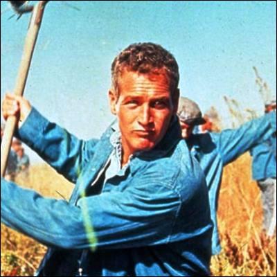 Dans quel film Paul Newman joue-t-il ce héros ?