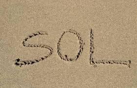 Mots commençant par 'sol'