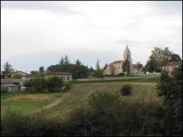 Commune de Nouvelle-Aquitaine, dans le Quercy blanc, Thézac se situe dans le département ...
