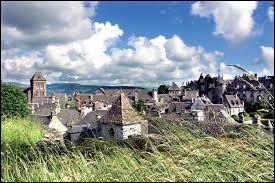 Salers est un charmant village du Cantal, mais c'est aussi le nom d'une race ...