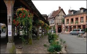 Quelle construction fait la renommée de Lyons-la-Forêt, dans l'Eure ?