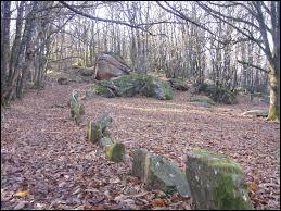 Comment appelle-t-on ce site mégalithique ?