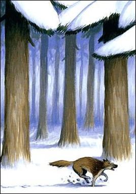 Qui est le chien de traîneau de «L'Appel de la forêt» de Jack London ?