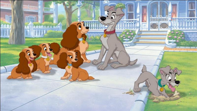 """Dans le dessin animé """"La Belle et le Clochard 2"""" comment se nomme le fils des deux chiens ?"""