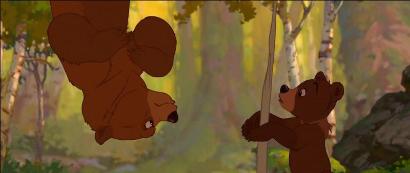 """Dans """"Frères des Ours"""", où Kinai et Koda veulent-ils se rendre ensemble ?"""