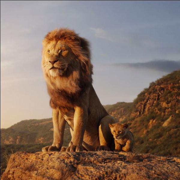 Comment dit-on ''lion'' en anglais ?