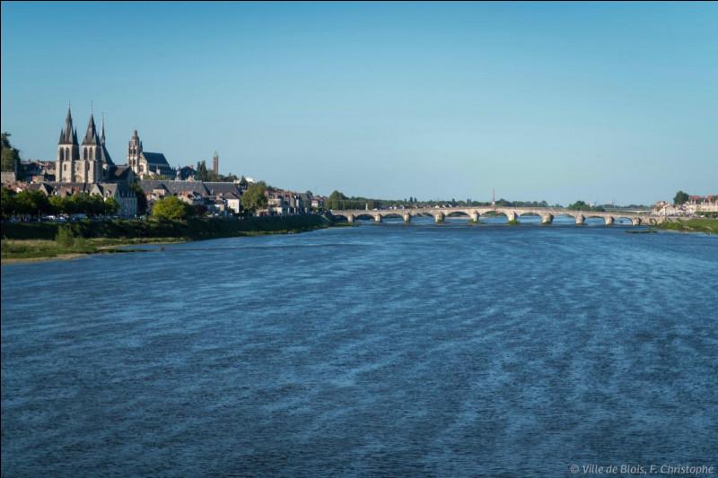 Quel est le plus long fleuve de France (qui coule entièrement en France) ?