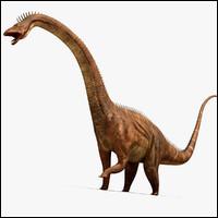 Le diplodocus a été découvert...