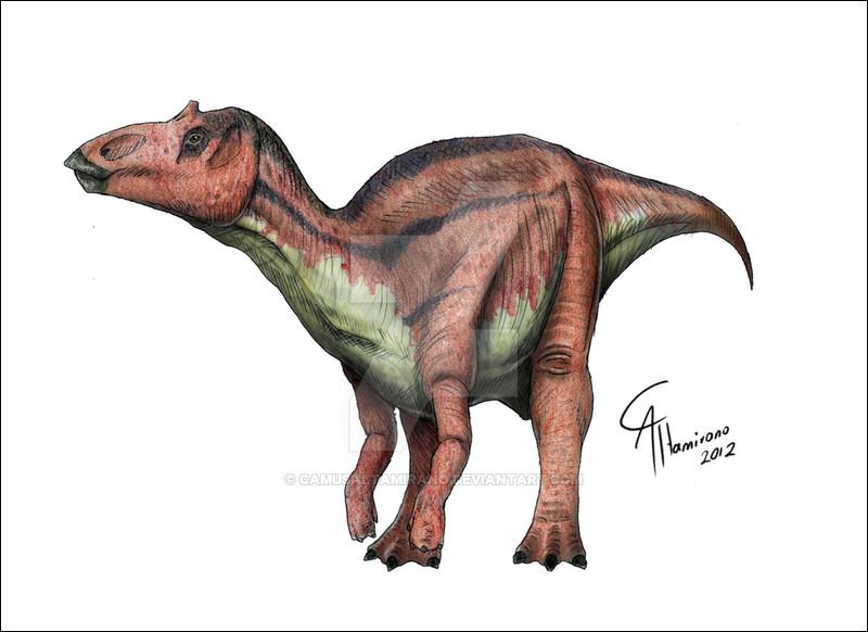 Maiasaura a été découvert...