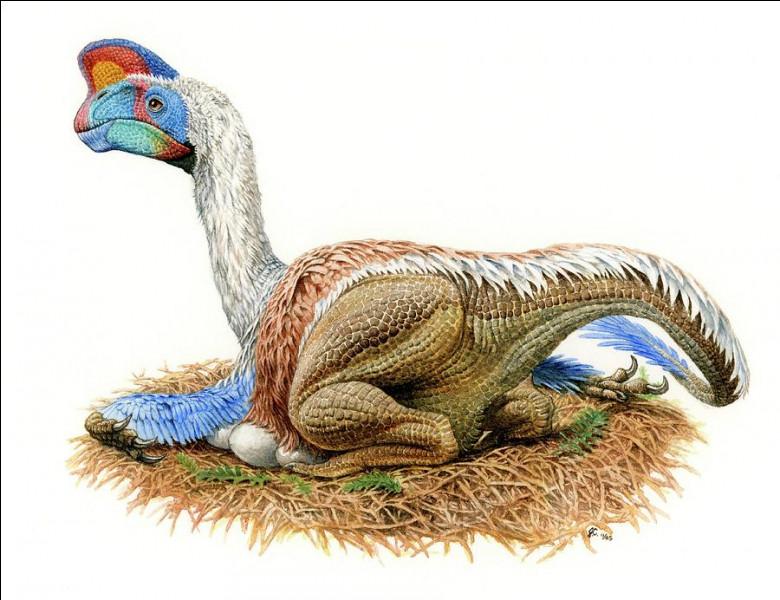 L'oviraptor a été découvert...