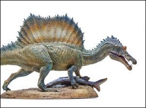 Le spinosaure a été découvert...