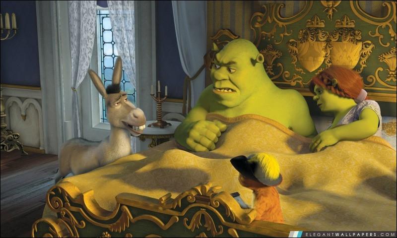 Quand Fiona se transforme-t-elle en ogresse, au début du film lui étant consacré ?