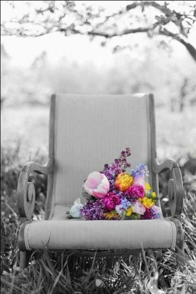 """Qui rendait hommage à son père en chantant """"Il était là dans ce fauteuil, mon spectateur du premier jour, comme un père débordant d'orgueil"""" ?"""