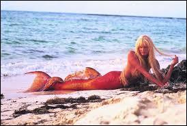 """Quel acteur tombe amoureux d'une sirène dans le film de Ron Howard """"Splash"""" (1984) ?"""