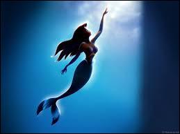 Comment s'appelle le prince de la Petite Sirène de Disney ?