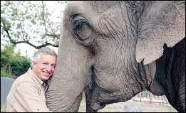 Quel parc zoologique de renom situé dans la province de Hainaut Éric Domb a-t-il créé en 1994 ?