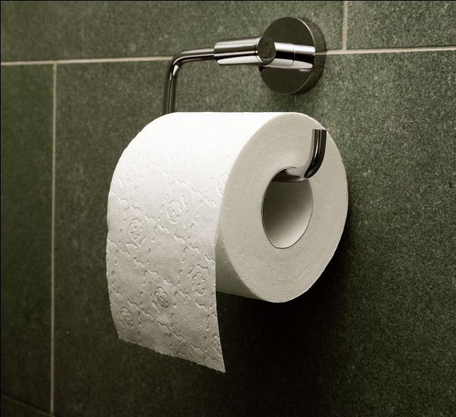 Y a-t-il toujours du papier quand tu vas aux toilettes ?
