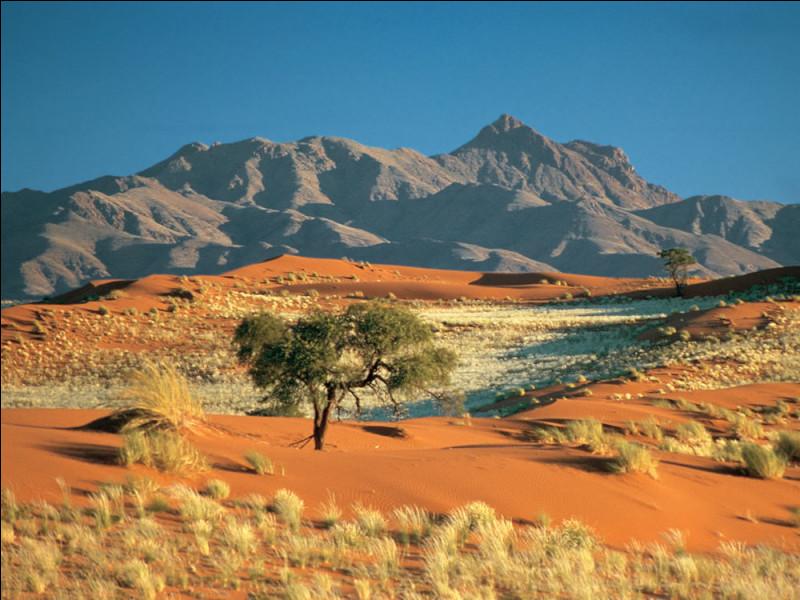 Na comme Namibie : avec quel pays la Namibie n'est-elle pas voisine ?