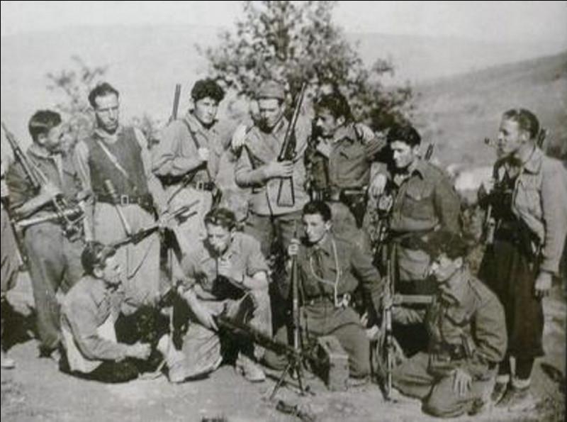 Ce maquis des Alpes a constitué une forteresse, importante base de la Résistance qui y a regroupé hommes et matériel, fonctionnant à partir du 9 juin comme une zone libérée avec drapeau et administration. L'assaut de l'armée allemande, du 21 juin au 9 août 1944, entraîne la fin du maquis et des centaines de morts. C'est ...