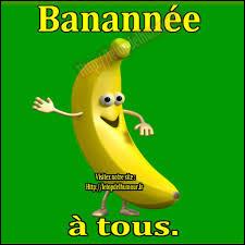 L'être humain et la banane partagent ... % de leur ADN !